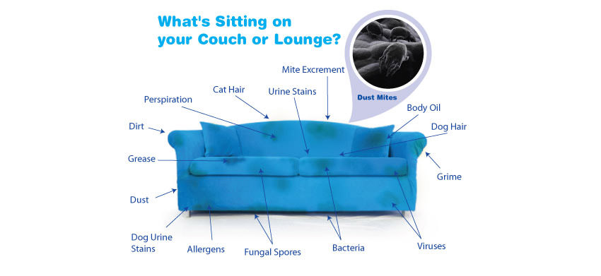 Max's Upholstery Cleaning Serving: Surprise AZ, Waddell AZ, Buckeye AZ, Litchfield Park AZ, El Mirage AZ, Sun City AZ, Sun City West AZ, Youngtown AZ, Goodyear AZ, Glendale AZ, Peoria AZ, Laveen AZ, Tolleson AZ, Avondale AZ, Phoenix AZ, Scottsdale AZ, Anthem AZ, Wittman AZ, Wickenburg AZ, Morristown AZ, Tempe AZ